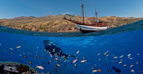 Aurora Liveaboard Komodo National Park Indonesia