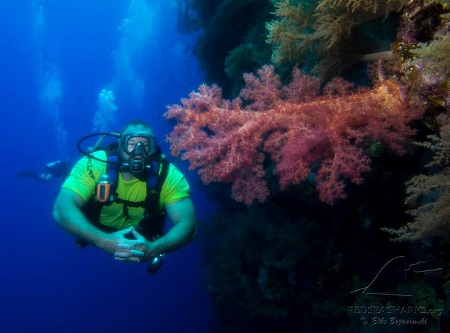 Red Sea UnderseaX Diver with Soft Coral